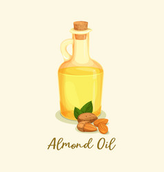 Bottle with golden almond oil or jar near nuts vector