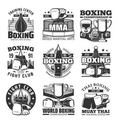 boxing muay thai single combats icons set vector image