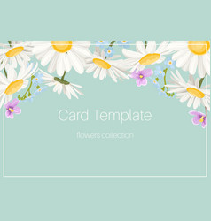 daisy chamomile floral wedding invite blue yellow vector image