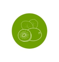 Icon Kiwifruit in the Contours vector