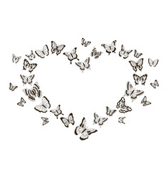monochrome heart butterflies flying insects vector image