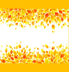 orange and yellow autumn fall leaves background vector image