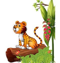 A tiger above a trunk vector image vector image