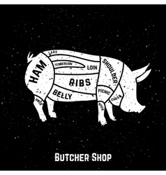 Cuts of pork vector image vector image