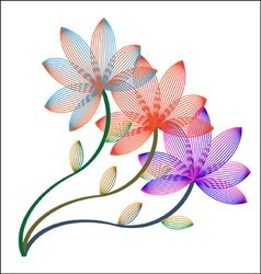 Asian bloom lily pattern vector