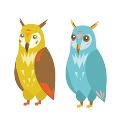 Cute Colorful Owl Set vector image