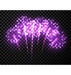 Festive lilac firework background vector