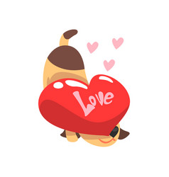 Funny jack russell terrier dog with red heart vector