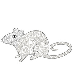rat coloring book for adults vector image