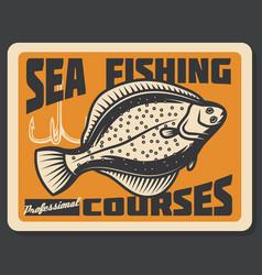 sea fishing courses flounder vector image