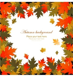Background autumn leaves frame vector image vector image