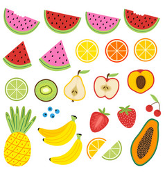set of isolated fruits vector image