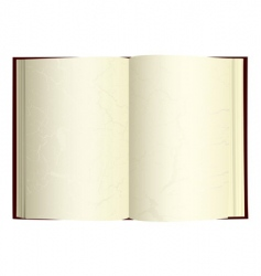 vintage open book vector image