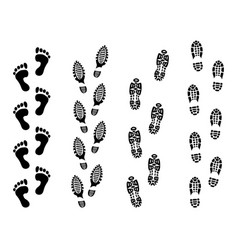 footsteps isolate on white background footprint vector image
