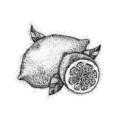 Dotwork lemon fruit vector