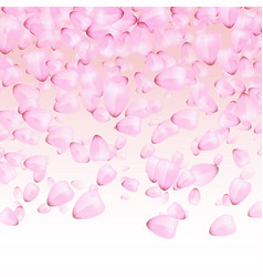 Falling petals of japanese cherries vector