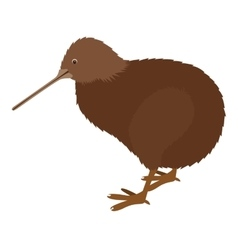 Kiwi bird icon vector