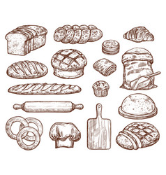 Bakery set with a lot of types fresh bread vector
