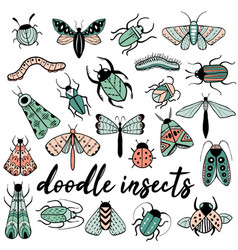 Big colorful hand drawn doodle set with insects vector