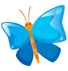 Butterfly with blue wings vector
