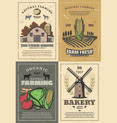 farming farm barn field vegetables and animals vector image