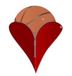 love basketball vector image