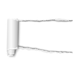 Oblong snatched hole in sheet white paper vector