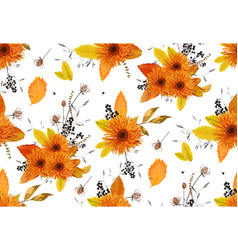 Pattern seamless autumn flowers gerbera sunflower vector