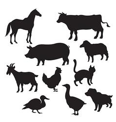 Silhouettes domestic animals vector