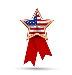 American flag as star shaped symbol vector image