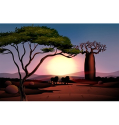 The desert with a sunset view vector image vector image