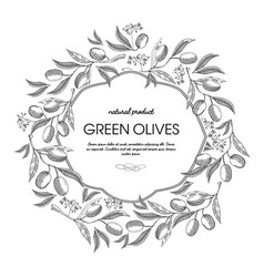white colored filigree frame hand drawn sketch vector image