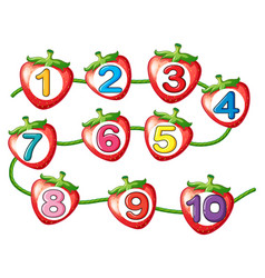 counting numbers on strawberries vector image vector image