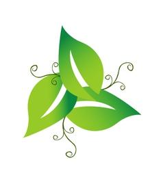 Green swirly leaves logo vector image vector image
