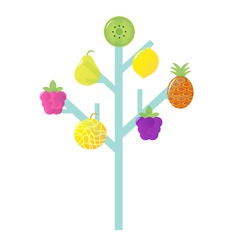 abstract stylized retro fruit vector image vector image