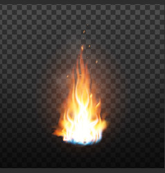 animation burning fire with sparks effect vector image