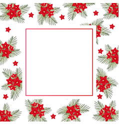 Cypress vine flower on christmas white banner card vector