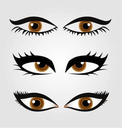 Different types of womens eyes vector image