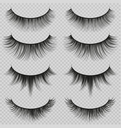 Feminine lashes set realistic false vector
