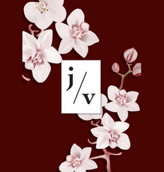 floral dark red orchid wedding invitation card vector image
