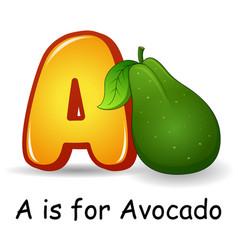 Fruits alphabet a is for avocado vector