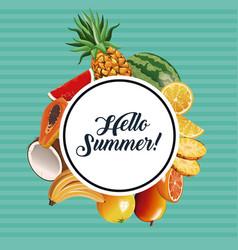 hello summer fresh fruit poster vector image