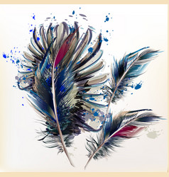 Ink spots and realistic bird feathers vector