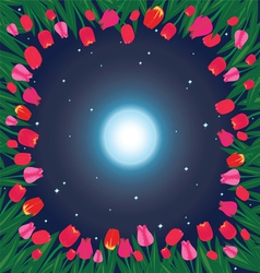 moon on the sky and field of tulips vector image