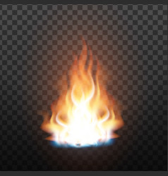 animation stage of bright realistic fire vector image