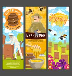 Beekeeper honey and bee on apiary beekeeping vector