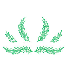 Eucalyptus branches and wreats with leaves set vector