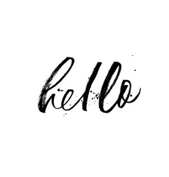 hello phrase modern brush calligraphy vector image