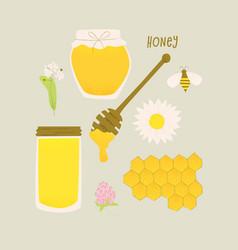 Honey design vector