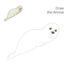Learn to draw animal seal vector image